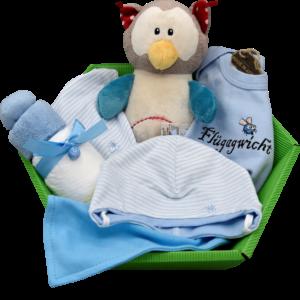 Baby Geschenkkorb jungs